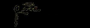 cropped-logo-tpc-mit-schrift.png